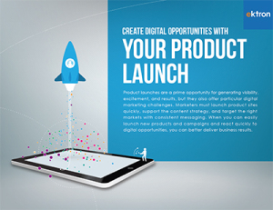 Ektron Product Launch eBook Cover